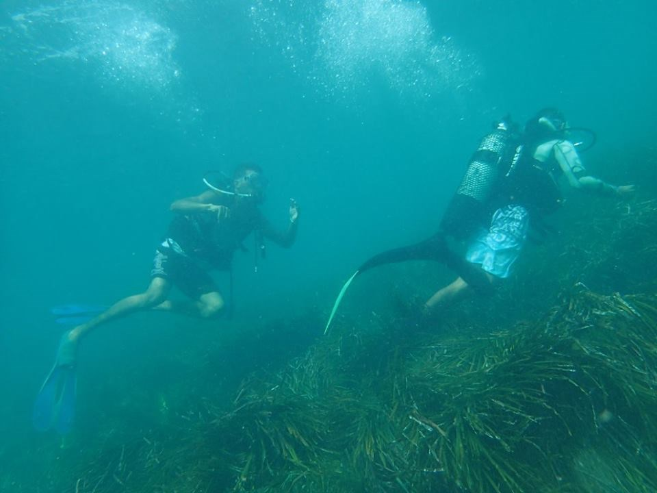 Scuba Diving Photo in Tunisia