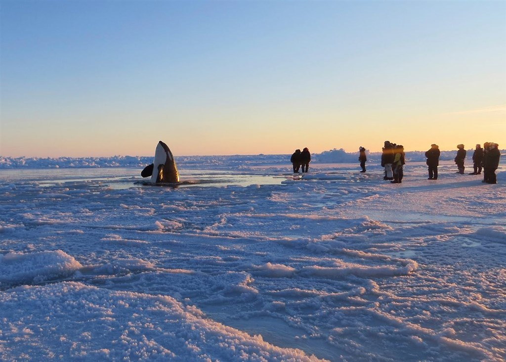 Sedna Epic Expedition's photo