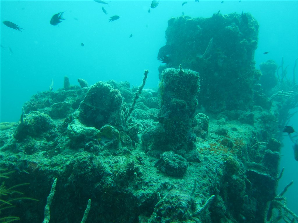 Scuba Diving Photo in Olympia Maru in Philippines