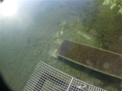 Scuba diving in Germany