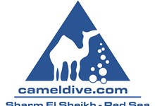 Camel Dive Club Dive center