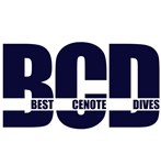 Best Cenote Dives Dive center