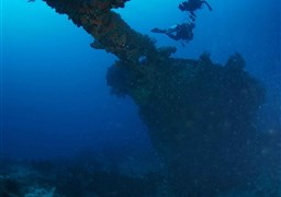 Scuba diving in Palau