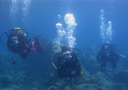 Scuba diving in Abades in Spain