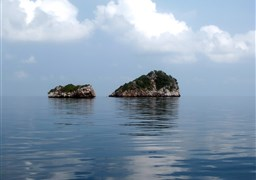 Scuba diving in Angthong Marine Park - Koh Yippon/Hin Yippon in Thailand