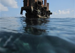 Scuba diving in Filladhoo Wreck in the Maldives