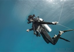 Scuba diving Deep South Special 10 nights