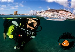 Scuba diving in Playa Las Vistas in Spain
