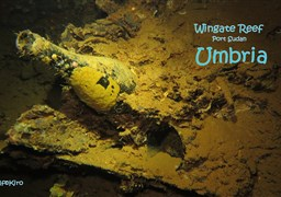 Scuba diving in Wingate Reef Wrack Umbria in Sudan