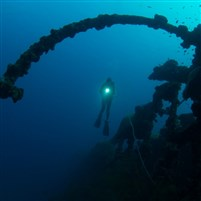 British Loyalty Wreck Dive site
