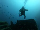 Scuba diving photo by LUCKY DIVERS MALDIVES - Gulhi