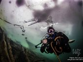 Scuba diving photo by Walter Rekirsch