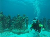Scuba diving photo by Diving Center Cancun