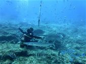 Scuba diving photo by GooDiving